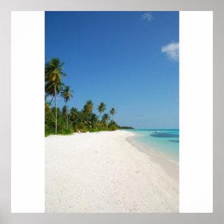 Paraíso de la playa con las palmeras póster