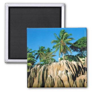 Paraíso encontrado, Seychelle Imán Cuadrado