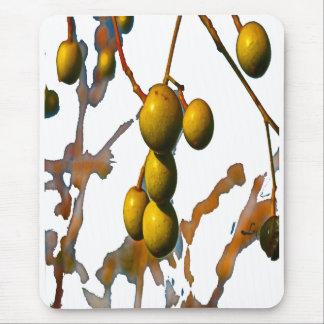 PARAISO FRUIT FOR OBATALA MOUSE PAD