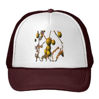 PARAISO FRUIT FOR OBATALA TRUCKER HAT