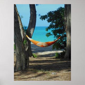 Paraíso hawaiano póster