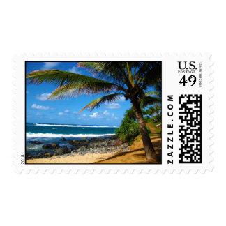 Paraíso hawaiano sello