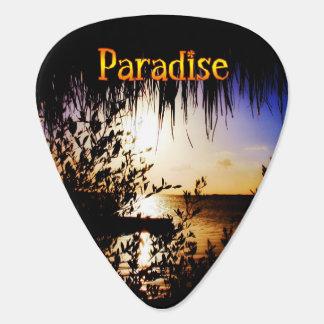 Paraíso Plectro