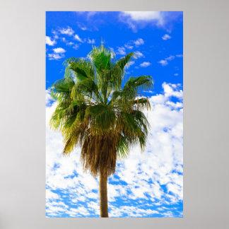 paraíso Sun-besado de la palmera Poster