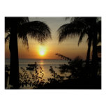 Paraíso tropical impresiones