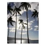 Paraíso tropical postal