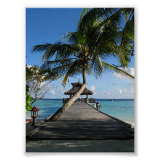 Paraíso tropical póster