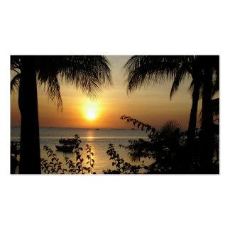 Paraíso tropical tarjetas de visita