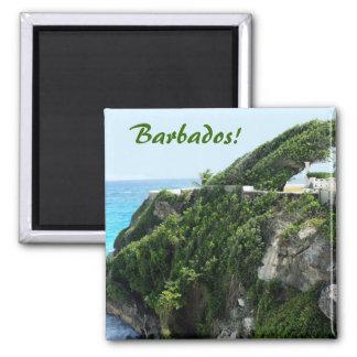 Paraíso ventoso de Barbados Imán Cuadrado