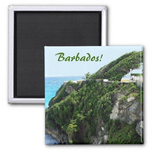 Paraíso ventoso de Barbados Imán De Nevera