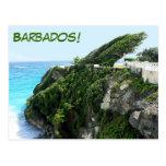 Paraíso ventoso de Barbados Tarjetas Postales