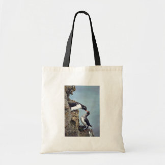 Parakeet Auklet Tote Bags