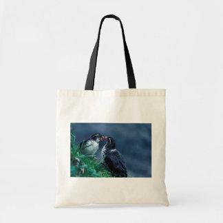 Parakeet Auklet Pair Budget Tote Bag