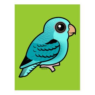 Parakeet barrado turquesa postales