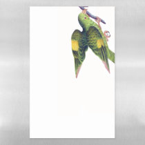 Parakeet Bird Animal Dry Erase Magnetic Sheet