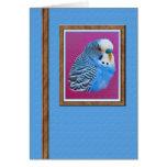 Parakeet Blank Note or Greeting Card.