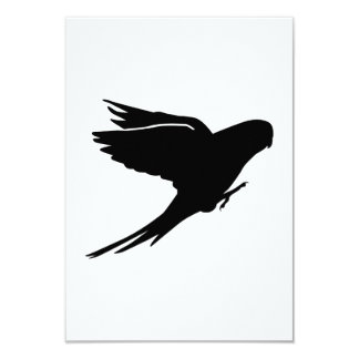 Parakeet budgie announcement card