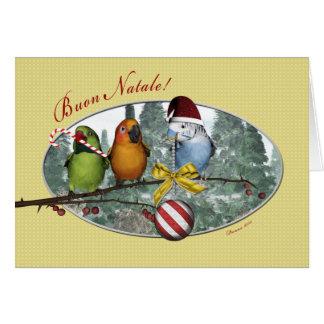 Parakeet Buon Natale Italian Christmas Card