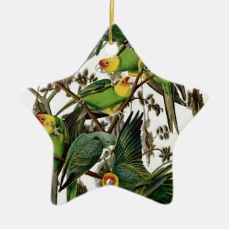 Parakeet de Carolina Adorno Navideño De Cerámica En Forma De Estrella