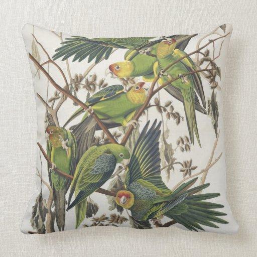 "Parakeet de Carolina, de ""pájaros de América"", 182 Almohada"