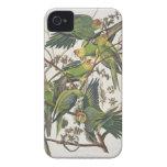 "Parakeet de Carolina, de ""pájaros de América"", 182 Case-Mate iPhone 4 Cobertura"