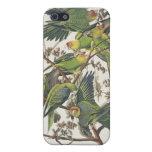 "Parakeet de Carolina, de ""pájaros de América"", 182 iPhone 5 Funda"