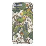 """Parakeet de Carolina, de """"pájaros de América"""", Funda De iPhone 6 Barely There"""