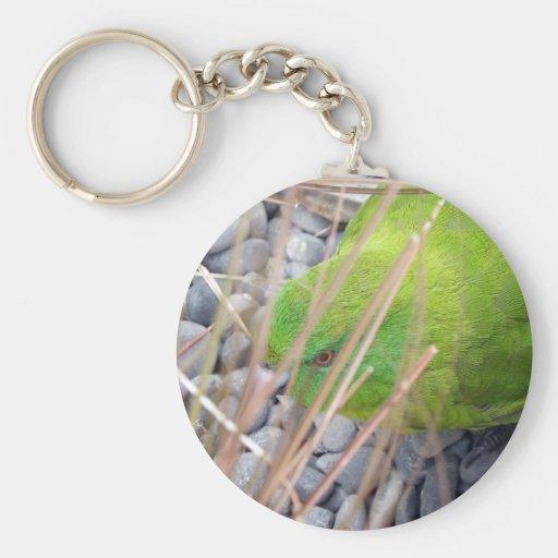 Parakeet de la isla de contrarios llavero redondo tipo pin