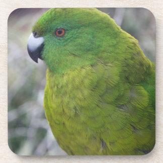 Parakeet de la isla de contrarios posavasos de bebida
