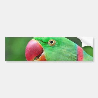 Parakeet del Alexandrine Pegatina Para Auto