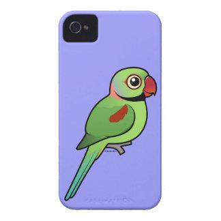 Parakeet del Alexandrine