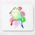 Parakeet del arco iris alfombrillas de raton
