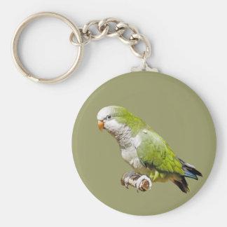Parakeet del monje llaveros personalizados