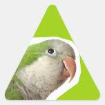 Parakeet del monje pegatina de triangulo personalizadas