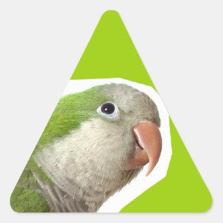 Parakeet del monje pegatina triangular