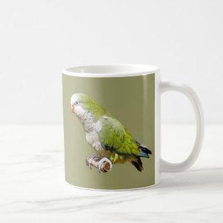 Parakeet del monje taza