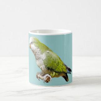 Parakeet del monje tazas