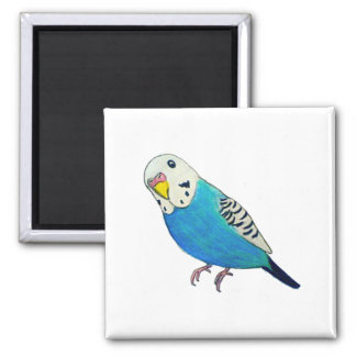 Parakeet Drawing 2 Inch Square Magnet