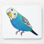Parakeet Drawing Mouse Pad