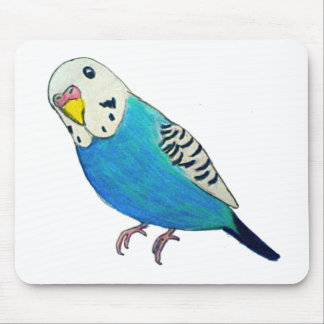 Parakeet Drawing Mouse Pad