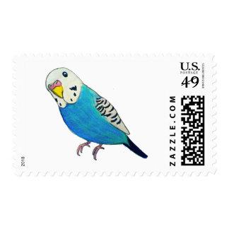 Parakeet Drawing Postage