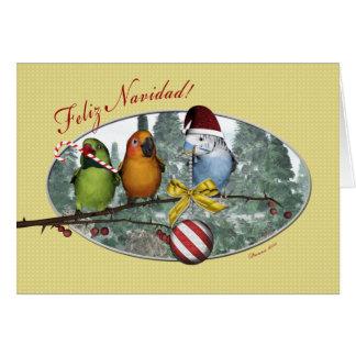 Parakeet Feliz Navidad Spanish Christmas Card