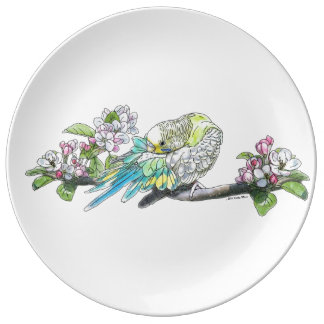 Parakeet Grooming Its Feathers Porcelain Plate