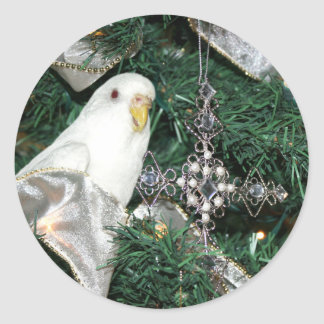 Parakeet in a Christmas tree Classic Round Sticker