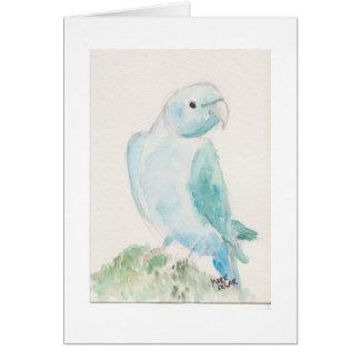 Parakeet indio del ringneck tarjeta de felicitación
