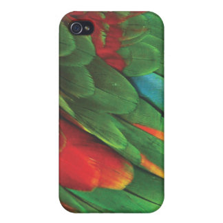 Parakeet iPhone 4/4S Cover