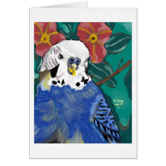 Parakeet notecard