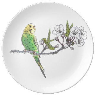 Parakeet on Branch Porcelain Plate