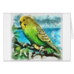 Parakeet on the Island Greeting Card
