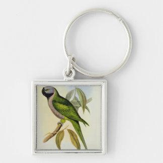 Parakeet: Palaeornis Derbianus, c.1850 Keychain